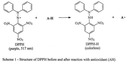 """Repare que o átomo de azoto (N) """"ganhou"""" o hidrogénio (H), ficando assim reduzido"""